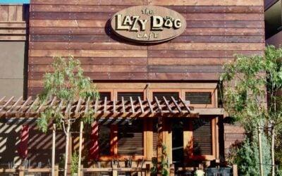 Lazy Dog Cafe Temecula 400x250