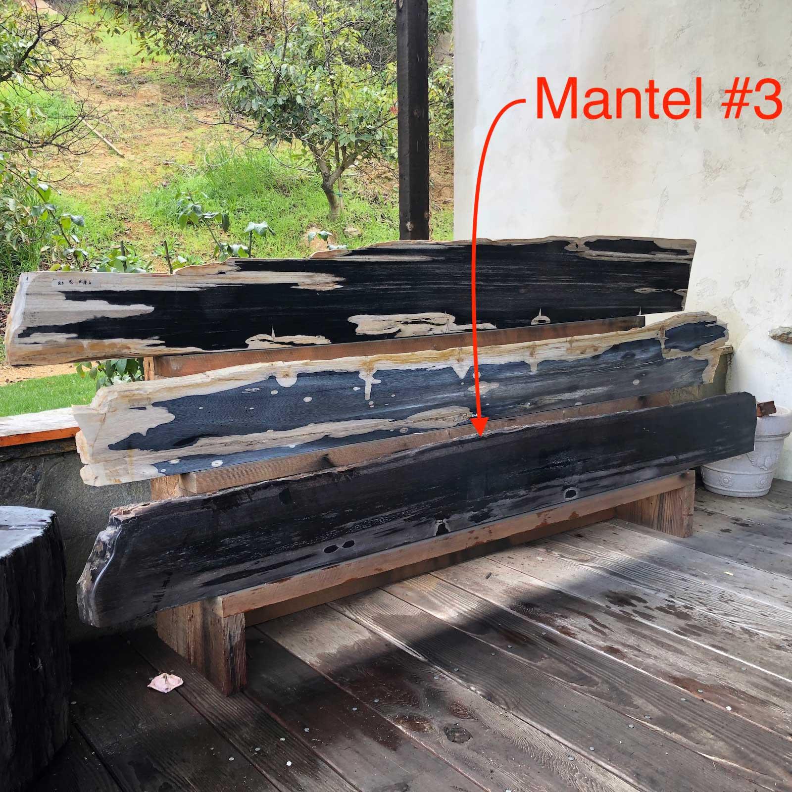 Petrified Wood Mantel 3