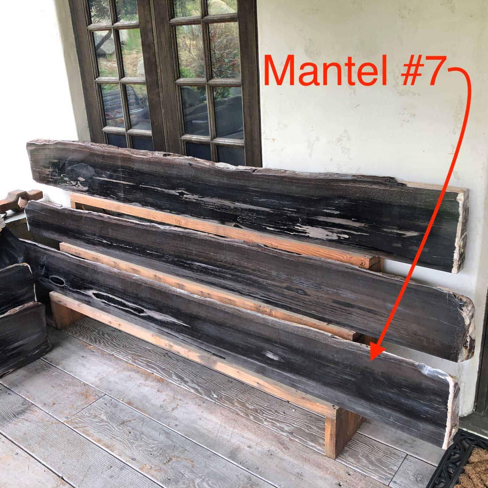Petrified Wood Mantel 7