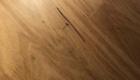 Blackbutt Exotic Flooring 140x80
