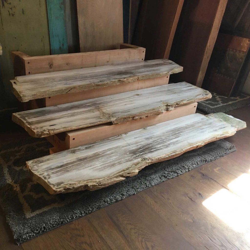 Petrified Wood Shelves 1024x1024 1