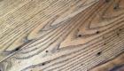 Semi Chestnut Flooring03 140x80