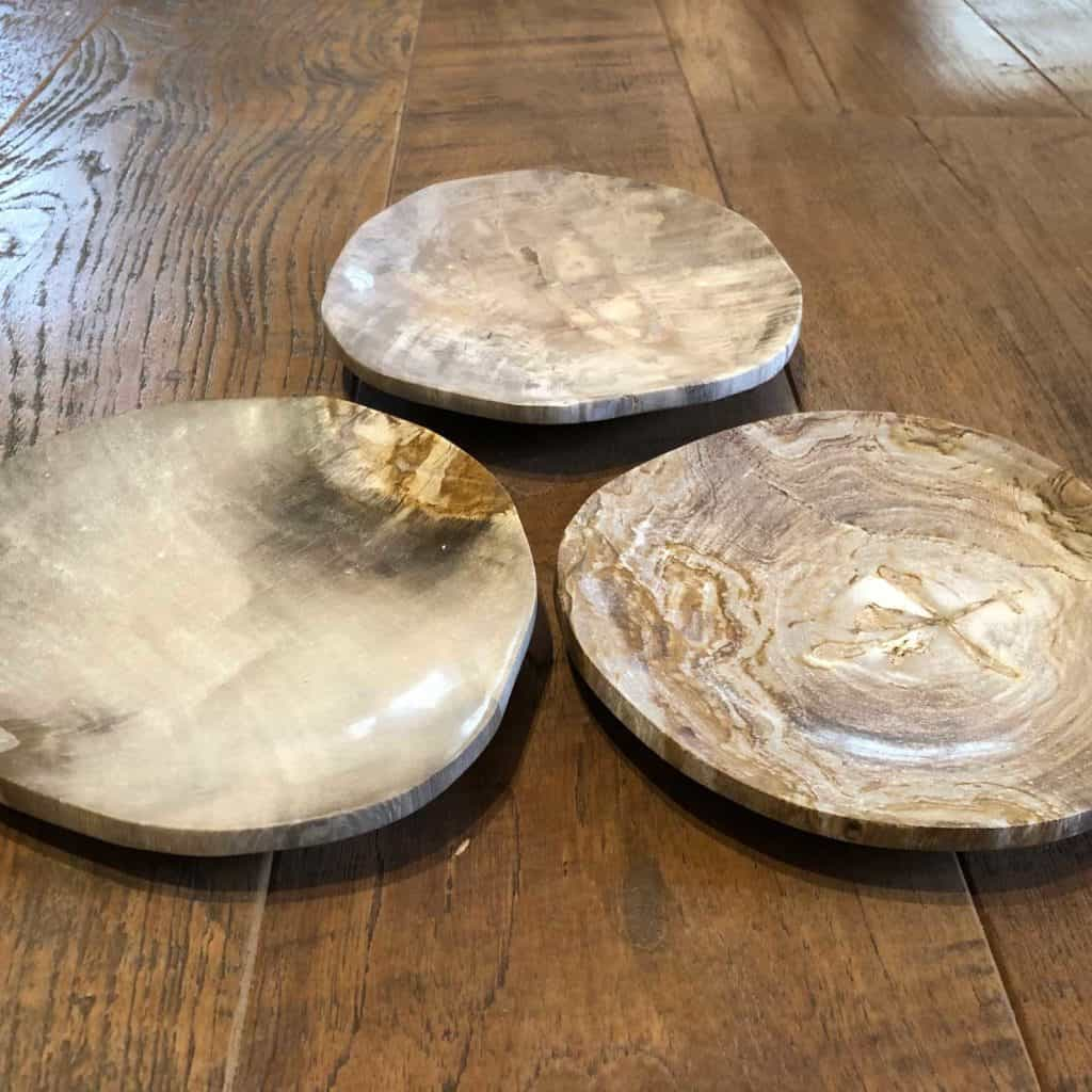 Petrified Wood Dishes 1024x1024 1
