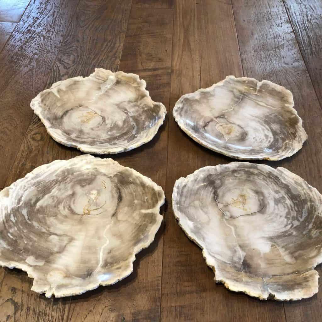 Petrified Wood Plate Group A 1024x1024 1