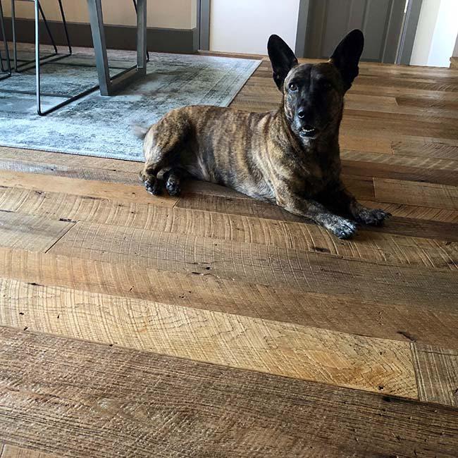 rustic oak flooring10 - Reclaimed Barn Oak